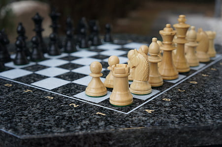 chess, play, chess game, figures, white, black, horse