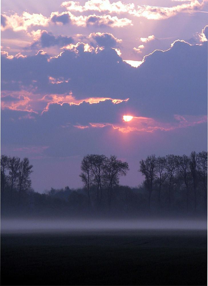 morgenstimmung, boira de matí, Alba, tardor, torna la llum, silenciós, estat d'ànim