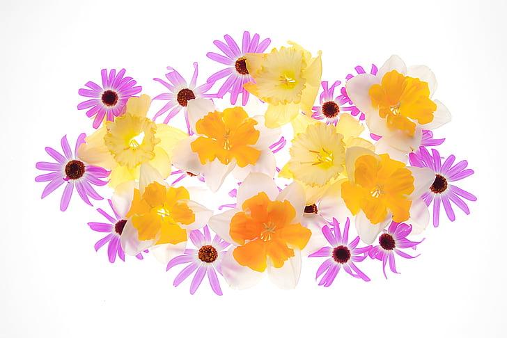 flors, flors grogues, floral, flors violetes