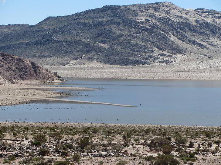 Altiplano, vee, Lake, Peruu, maastik, loodus, Daybreak