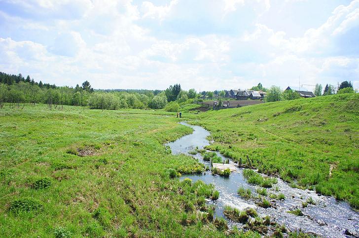 riu, verd, còdols, natura, l'estiu, correcte, plantes