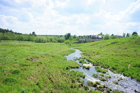 rieka, Zelená, kamienky, Príroda, letné, ok, rastliny