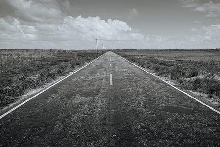 carretera, destinació, viatge, viatge, viatge per carretera, blanc i negre, l'autopista