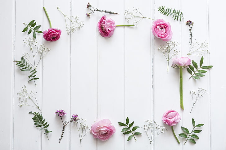flowers, background, nature, wood - Material, backgrounds, decoration, flower
