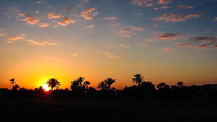 Μαρακές, ηλιοβασίλεμα, Φοίνικας, Μαρόκο, ορίζοντα, βραδινό ουρανό, διάθεση