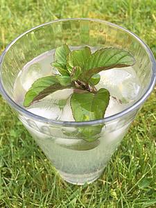 jook, Mojito, kokteil, Mint, lubja, alkoholi, klaas