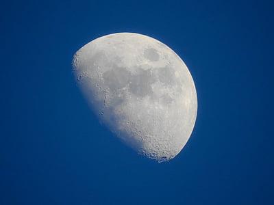 mesiac, Sky, polmesiac, deň, pozadie, Tapeta, Astronómia