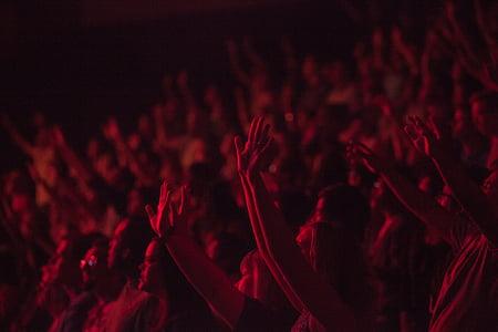 people, crowd, concert, show, spectators, fun, hands