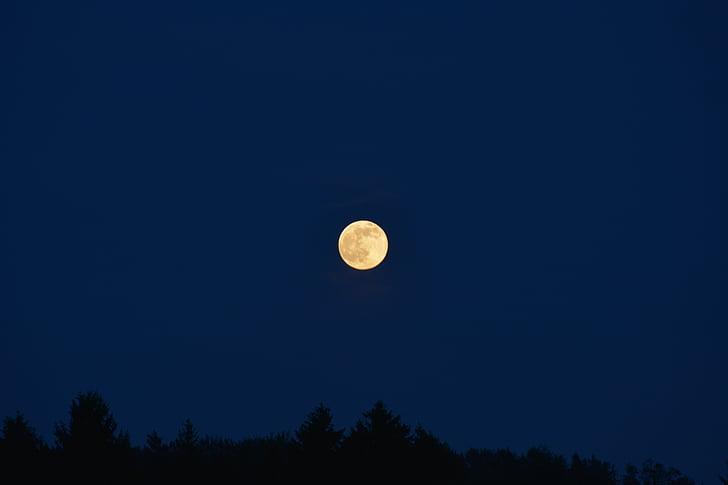 місяць, небо, ніч, Темний, Нічне небо, повний місяць