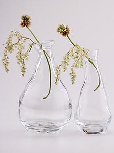 bodegons, vidre, flors, ampolles, transparents, ulleres