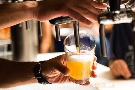 pivo, chopp, sretni sat, piće, hladno, Osvježavanje, bar