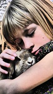 noia, conill, ictus, animal, animal de companyia, l'amor, arraulir
