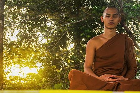 mediteerima, theravada budismi, munk, mõtiskledes munk, budism, Meditatsioon, usuliste