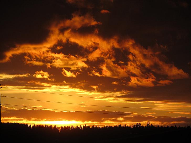 naturen, solnedgång, solnedgång sky, kvällen, sommar, solen, skymning