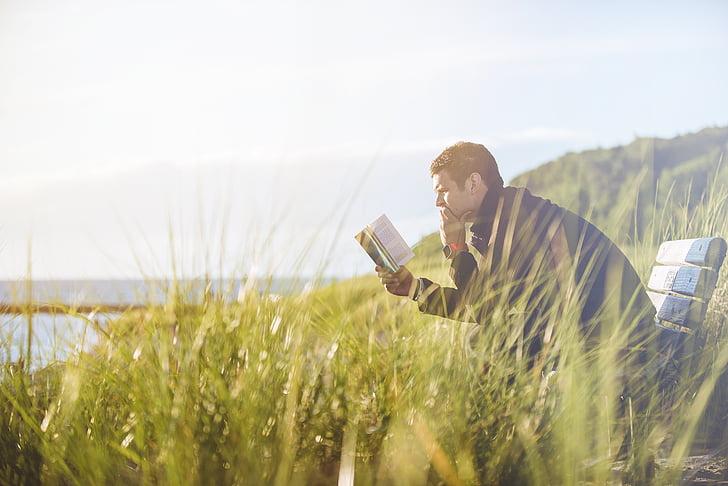 Banc, herba, home, persona, lectura, cel, en solitari