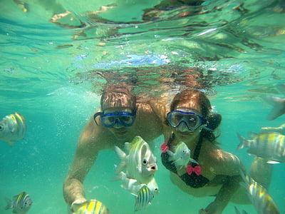 ronjenje, Ožujak, vode, primorski, pod vodom, mir, roniti