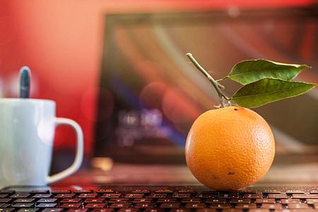 πορτοκαλί, γραφείο, φρούτα, ζουμερά, τροφίμων, ώριμα, υγιεινή