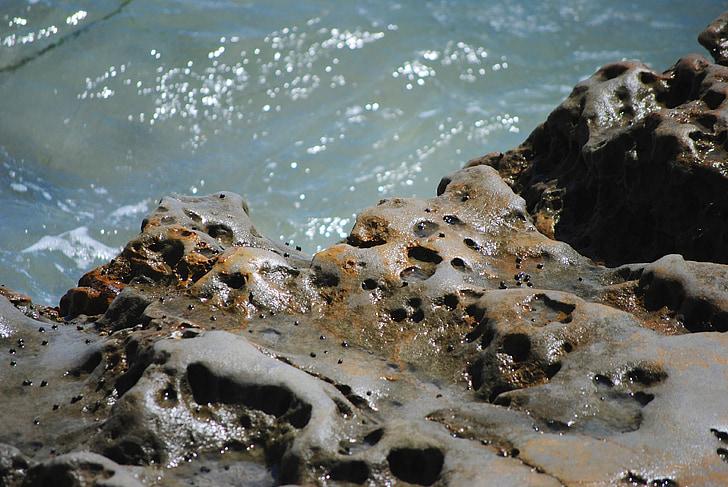 rocas, Océano, agua, Pacífico, verano, Costa