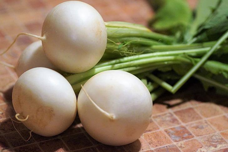 bianco, ravanello, rapa, verdure, radice, giardino, cibo