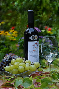 Stilleven, druiven, fles wijn, wijnbladeren