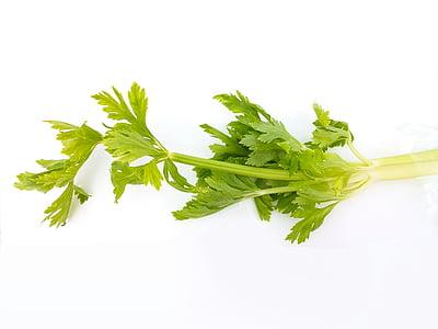 dārzeņi, materiāls, zaļa, selerijas, pārtika, zaļā krāsa, pārtikas produkti un dzērieni