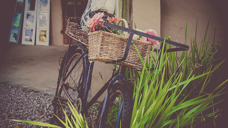 bicicletes, flors, botiga, verema bicicletes, cistella, anyada, vell