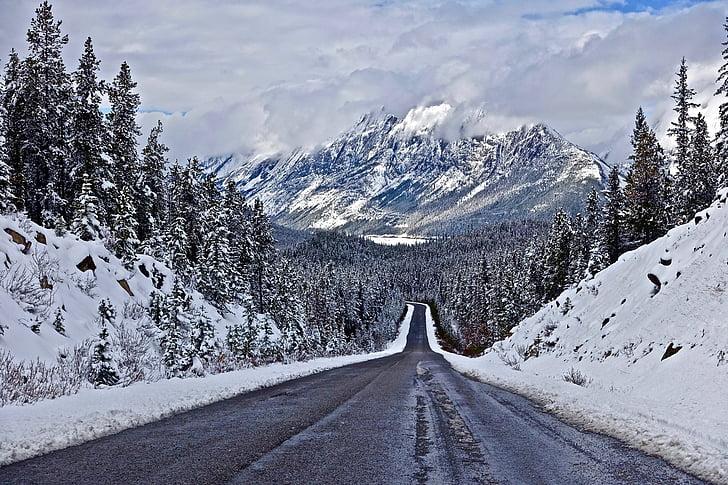 autoestrada, perspectiva, viagem, viagens, paisagem, transportes, neve