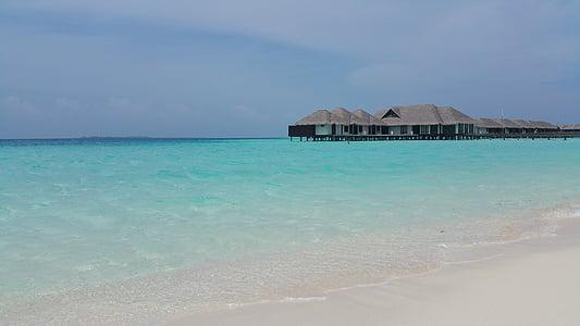 Beach, kék, tengerpart, egzotikus, Holiday, Kunyhó, idilli