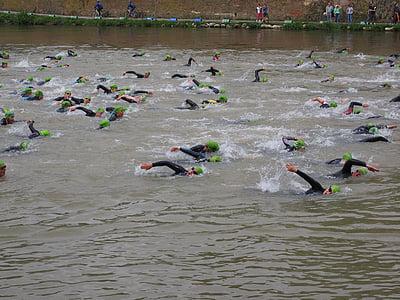 competència, rastreig, implicats, nedar, atletes de pista i camp, atletes, triatló