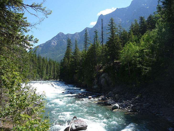 Montana, Glacera del parc nacional, muntanyes, escèniques, paisatge, paisatge, arbres