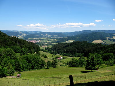 black forest, firs, valley, landscape, idyll
