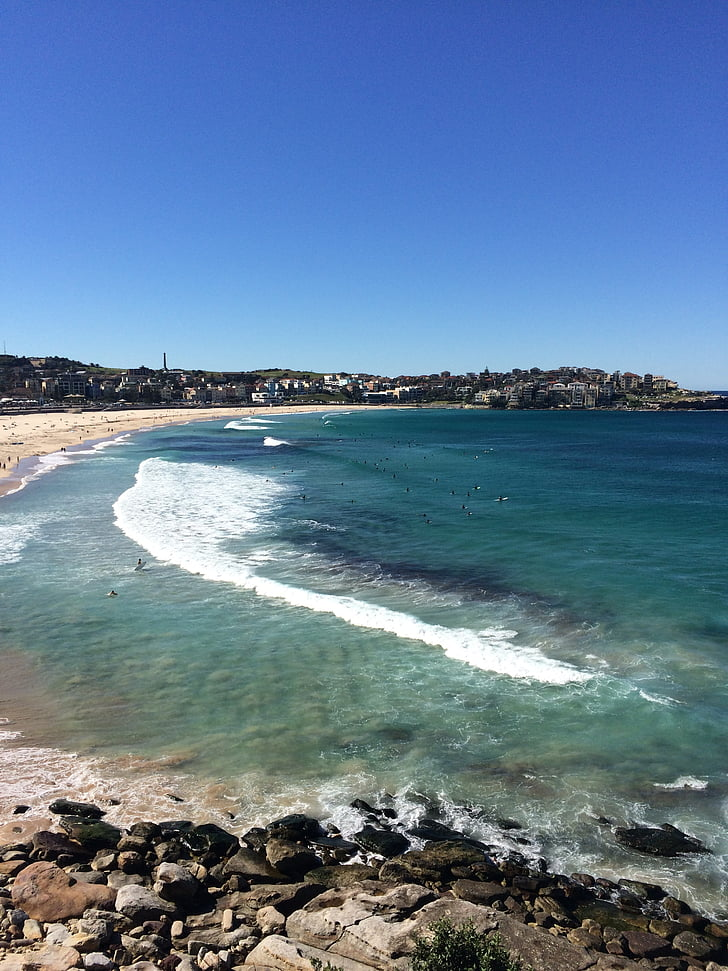 Bondi beach, Australië, strand, kust, Oceaan, zonnige, vakantie