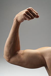 arm, muskel, stærk, biceps, motion, fitness, bodybuilding