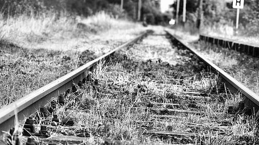 gleise, seemed, traffic, track bed, mystical, railroad tracks, rail traffic