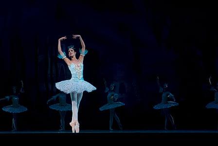 ballet, ballerina, performance, don quixote, dancer, woman, susan bello