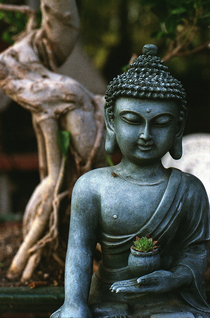 Bouddha, méditation, statue de, religion, spirituelle, bouddhisme, religieux