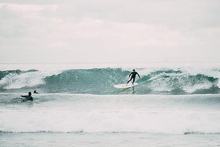 ação, atleta, praia, diversão, oceano, mar, desporto