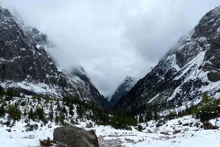 Valley, Alpine, mäed, maastik