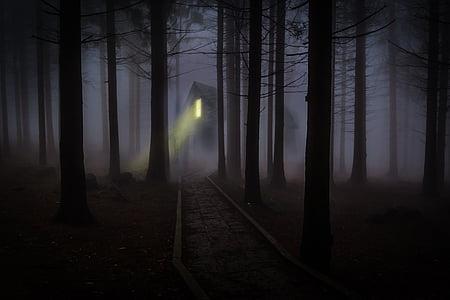 fairy tale, fantasy, foggy, forest, haunted, house, light beam