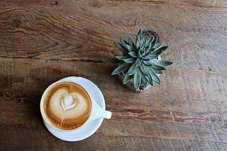 kopi, cangkir kopi, secangkir kopi, panas, minuman, minuman, Piala