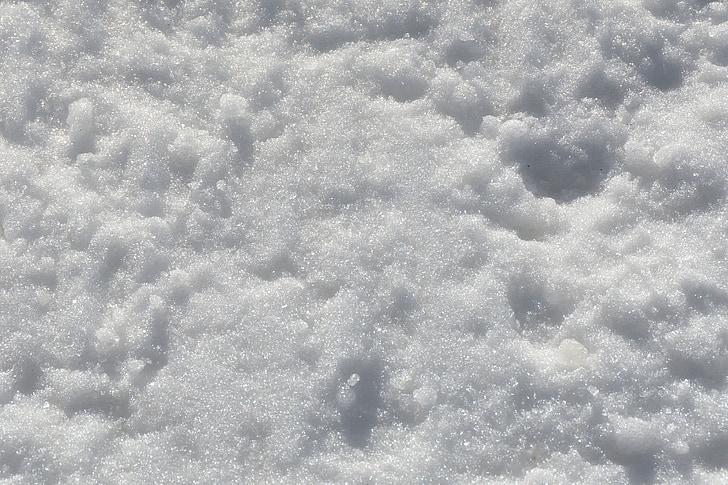 neige, froide, hiver, paillettes, arrière-plan, nature