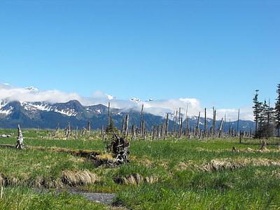Alaska, natura, cel, l'aigua, muntanya, riu, EUA