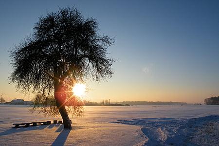 nascer do sol, impressões de inverno, invernal, neve, frio, Inverno, magia do inverno