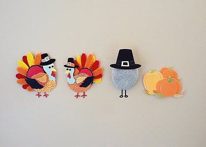 thanksgiving, turkey, season, holiday, multi colored, studio shot, no people