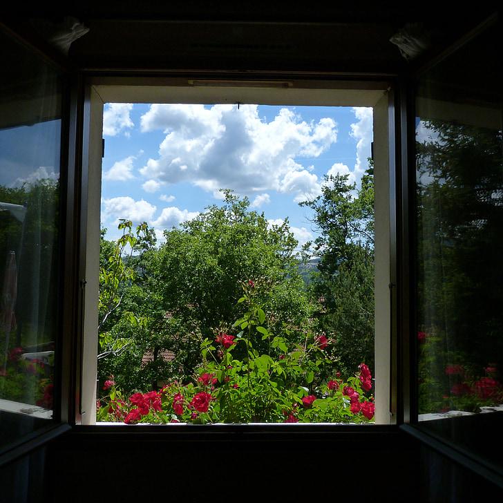 kraštovaizdžio, langas, atidarymo, gėlės, medžiai, dangus, šviesa ir šešėliai