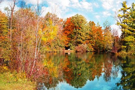 Sonbahar, Sonbahar, Sezon, arka plan sonbahar yaprakları, sonbahar yaprakları, Ekim, sonbahar arka planlar