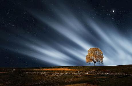 impressionant, calma, medi ambient, nit, paisatge, solitari, Lluna