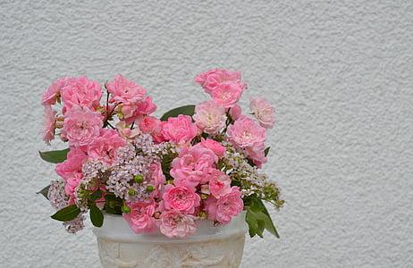 上升, 粉色, 开花, 绽放, 粉红色的玫瑰, 粉红色的花, 浪漫