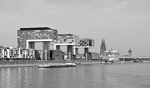thành phố, Cologne, Koeln, sông, sông Rhine, cần cẩu nhà, Nhà thờ Cologne cathedral