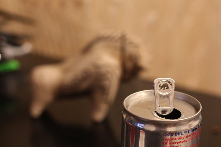 Red bull, var, dzēriens, stiprums, enerģijas dzēriens